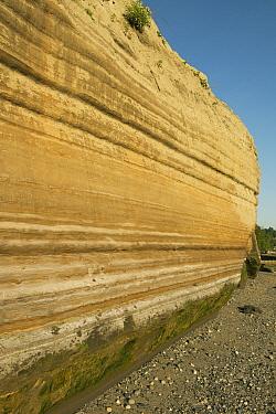 Varve sediment layers, indicative of Pleistocene inter-glacial lake sediments, Discovery Park, Seattle, Washington  -  Kevin Schafer