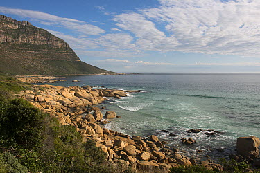 Rocky coastline, Karbonkelberg, Table Mountain National Park, Western Cape, South Africa  -  Pete Oxford