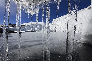 Icicles, Pastoruri Glacier, Cordillera Blanca, Peru  -  Cyril Ruoso