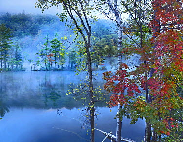Mist over lake, Emerald Lake, Emerald Lake State Park, Vermont  -  Tim Fitzharris