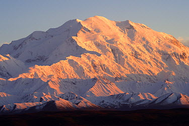 Mount Denali covered in snow, Alaska  -  Mark Raycroft