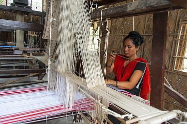 Woman using loom to weave cloth, India  -  Suzi Eszterhas