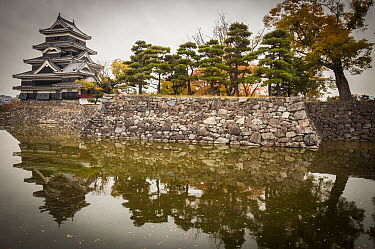 Castle and moat in autumn, Matsumoto Castle, Japan  -  Colin Monteath/ Hedgehog House