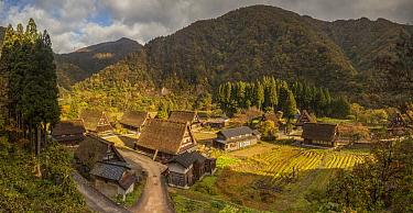 Traditional gassho-zukuri thatch roofed houses and shops, Suganuma Village, Japan  -  Colin Monteath/ Hedgehog House