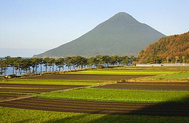Fields below volcano, Mount Kaimondake, Satsuma Peninsula, Kyushu, Japan  -  Kevin Schafer