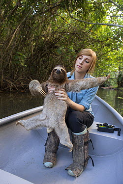 Brown-throated Three-toed Sloth (Bradypus variegatus) biologist, Rebecca Cliffe, holding sloth wearing sloth backpack while traveling in boat to release site, Aviarios Sloth Sanctuary, Costa Rica  -  Suzi Eszterhas