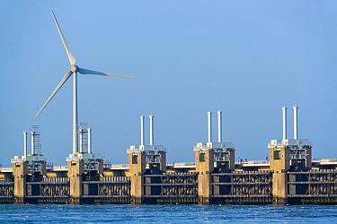 Wind turbine and Eastern Scheldt Storm Surge Barrier, Neeltje Jans, Netherlands  -  Nico van Kappel/ Buiten-beeld