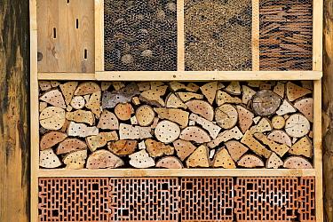 Bee house, Tyrol, Austria  -  Sjon Heijenga/ Buiten-beeld