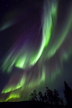 Aurora borealis, Lake Inari, Lapland, Finland  -  Heike Odermatt