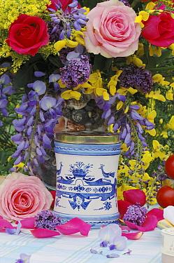Rose (Rosa sp) flower bouquet and pot  -  Jan Vermeer