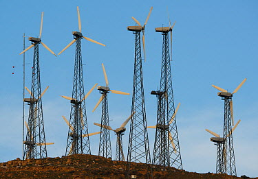 Windmill farm, Tehachapi Pass, California  -  Kevin Schafer
