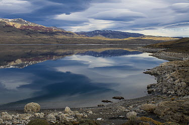 Calcium deposits along the edge of Sarmiento Lake, Torres del Paine National Park, Patagonia, Chile  -  Pete Oxford