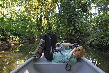 Biologist Rebecca Cliffe looking for Brown-throated Three-toed Sloths (Bradypus variegatus) in trees above, Aviarios Sloth Sanctuary, Costa Rica  -  Suzi Eszterhas
