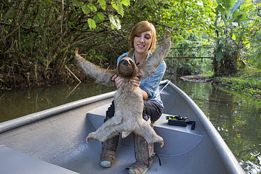 Brown-throated Three-toed Sloth (Bradypus variegatus) biologist, Rebecca Cliffe, holding sloth while traveling in boat to release site, Aviarios Sloth Sanctuary, Costa Rica  -  Suzi Eszterhas