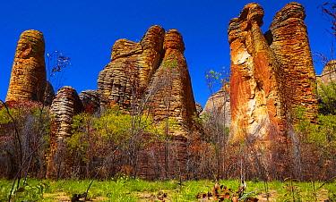 Western Lost City sandstone rock formations, Limmen National Park, Northern Territory, Australia  -  Martin Willis