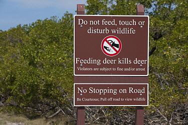 Warning signs, National Key Deer Refuge, Florida  -  Scott Leslie