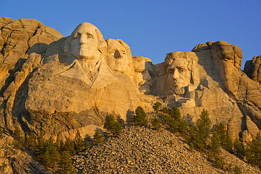Mount Rushmore National Monument, Black Hills, South Dakota  -  Kevin Schafer