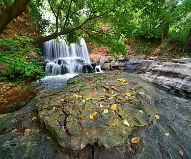 Waterfall, Tanyard Creek, Bella Vista, Arkansas  -  Tim Fitzharris