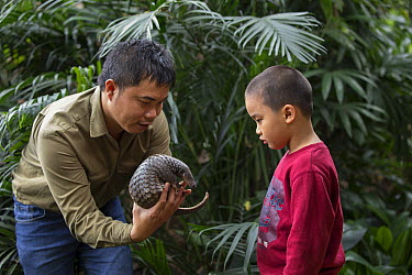 Malayan Pangolin (Manis javanica) conservationist, Thai Van Nguyen, showing rescued three month old baby to young boy, Carnivore and Pangolin Conservation Program, Cuc Phuong National Park, Vietnam, d...  -  Suzi Eszterhas
