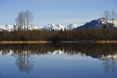 Wetland and mountains, Copper River Delta, Alaska