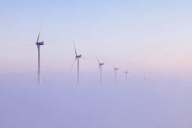 Wind turbines in fog, Noord-Holland, Netherlands