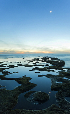 Coastal rocks at low tide, Cadiz, Spain