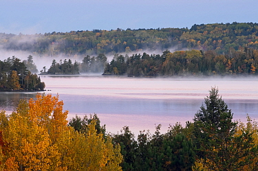 Shagawa Lake in morning mist in autumn, Boundary Waters Canoe Area Wilderness, Minnesota