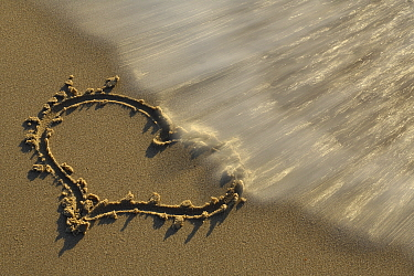 Heart in sand washed away by wave, Noord-Holland, Netherlands