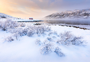 Red cabin near lake in winter, Lofoten Islands, Nordland, Norway