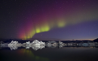 Northern lights over frozen lake, Iceland, Jokulsarlon, Iceland
