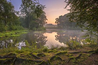 Lake with mist, Nature 2000 preserve, Overijssel, Netherlands