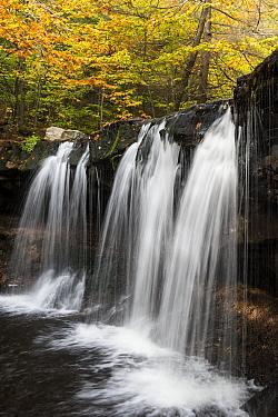 Oneida Falls, Kitchen Creek, Ricketts Glen State Park, Pennsylvania  -  Jeff Foott