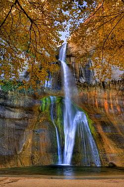 Calf Creek Falls, Grand Staircase-Escalante National Monument, Utah  -  Jeff Foott