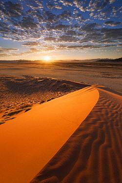 Sand dune at sunrise, Namib Naukluft National Park, Namibia