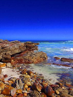 Coast, Cape of Good Hope, South Africa