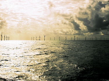 C power wind turbines, 120m tall with 60m blades, tallest tubines in the world, North Sea, Belgium