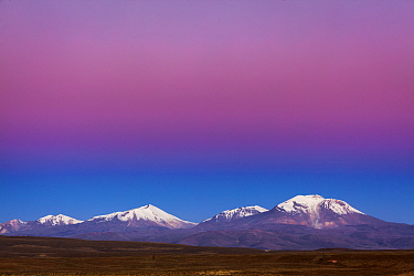 Sunset over the altiplano and snow-covered volcanoes, Guallatiri Volcano, Lauca National Park, Chile
