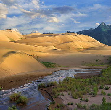 Sand dunes and river, Great Sand Dunes National Park, Colorado