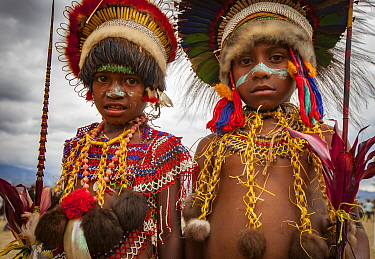 Boys in ritual make-up and traditional clothing during a sing-sing, Goroka Show, Goroka, Eastern Highlands, Papua New Guinea