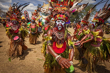 Men in ritual make-up and traditional clothing dancing during a sing-sing, Goroka Show, Goroka, Eastern Highlands, Papua New Guinea