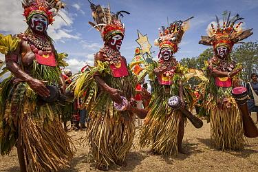 Women in ritual make-up and traditional clothing dancing during a sing-sing, Goroka Show, Goroka, Eastern Highlands, Papua New Guinea