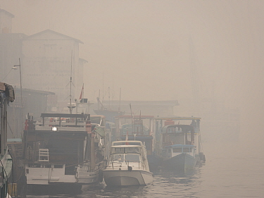 Boats in dense haze caused by fire, set by humans to clear rainforest, Kumai River, Kumai, Central Kalimantan, Borneo, Indonesia. October, 2015