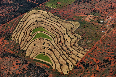 Crop patterns, western New South Wales, Australia