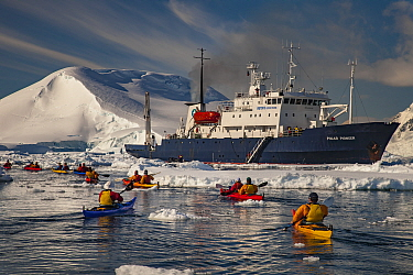 Kayakers paddling back to cruise ship Polar Pioneer, Lemaire Channel, Antarctic Peninsula, Antarctica
