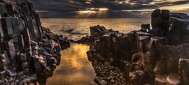Columnar jointed basalt rock cliff at sunrise, Blackhead Beach, Otago Peninsula, New Zealand
