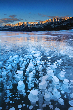 Mountains and frozen gas bubbles beneath surface of frozen lake, Abraham Lake, Canadian Rockies, Alberta, Canada