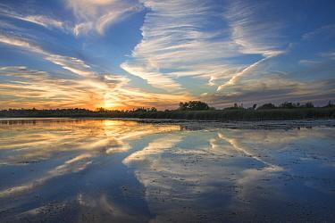 Sunset over lake, Pelican Lake, Florida