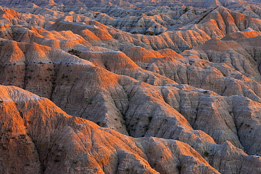 Sandstone rock formations, Badlands National Park, South Dakota