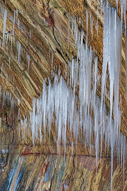 Icicles on canyon wall, Zion National Park, Utah