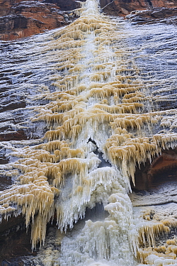 Frozen waterfall on the Virgin River, Zion National Park, Utah